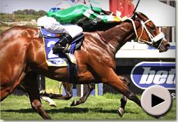 Grail Maiden wins at Kenilworth