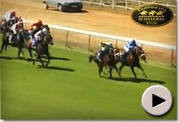 Grail Maiden wins wins at Durbanville