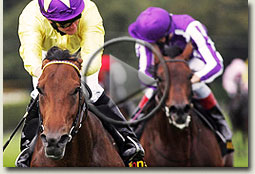 sea the stars irish champion stakes video