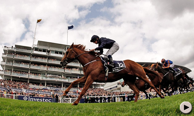 Ruler Of The World - Investec Derby