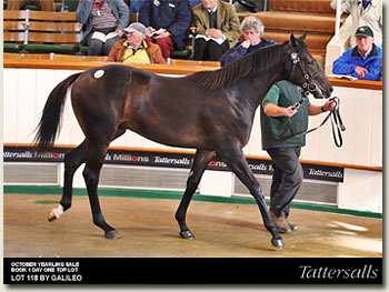 tattersalls october yearling sale book 1 day 1 top lot 118 by galileo