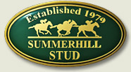 summerhill stud most visited thoroughbred breeding website in the world