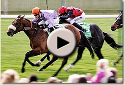 makfi 2000 guineas video
