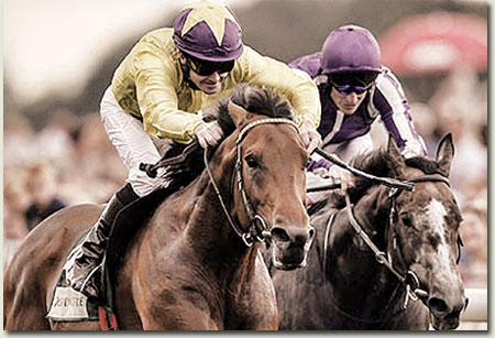 Sea The Stars - Juddmonte International Stakes
