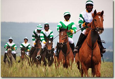 summerhill ready to run gallops