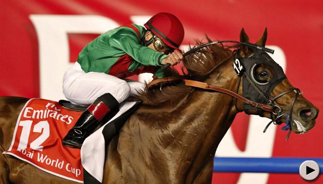 Animal Kingdom wins Dubai World Cup