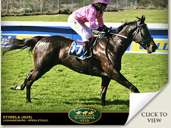 stemele by johannesburg out of opera etoile
