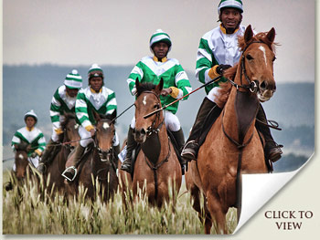 Emperors Palace Ready To Run Gallops
