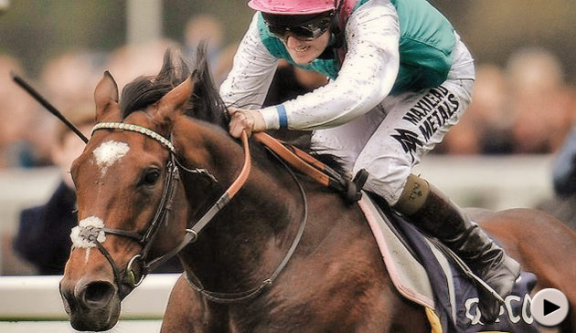 Frankel wins QIPCO CHampion Stakes