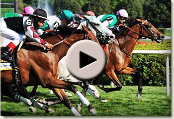 video of proviso winning the diana stakes at saratoga racecourse, usa