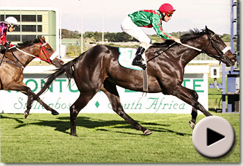 ebony flyer and igugu fight out the cape fillies guineas at kenilworth racecourse