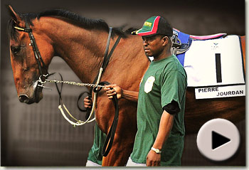 pierre jourdan south africa's people's horse video