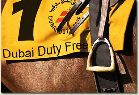 dubai duty free imbongi saddlecloth 1