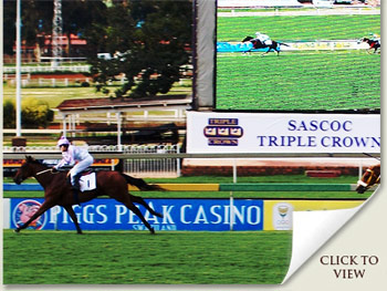 gauteng guineas winning margin