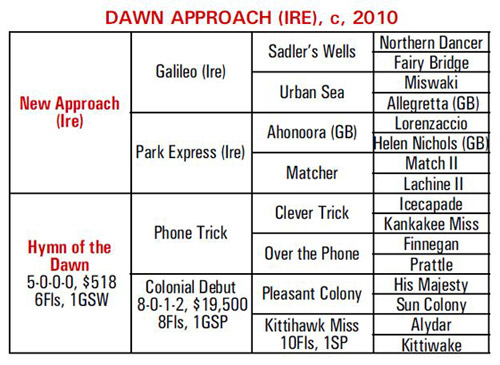 Dawn Approach Pedigree