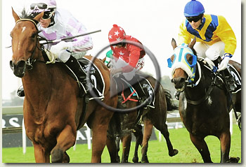 peermont emperors palace ready to run cup racecourse 7 november 2009 video