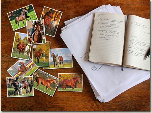 writing brochure