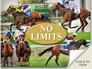 Best Value Racehorse Sale