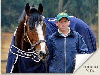 Investec Stallion Day 2012 Photos