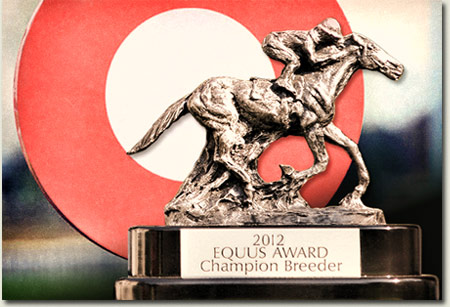 South African Breeders Championship