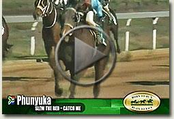 phunyuka emerald cup race video