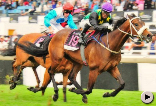 Wagner wins the Sansui Summer Cup