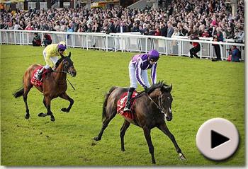 Camelot wins Irish Derby