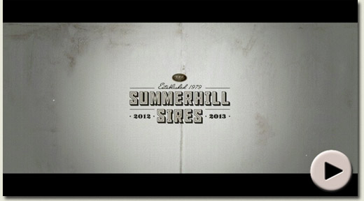 Summerhill Sires Film 2012 / 2013