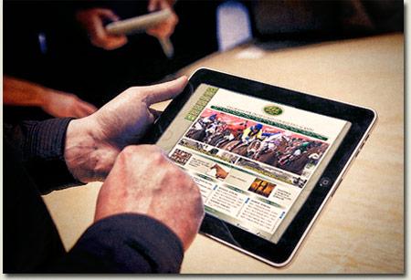 Summerhill Stud Thoroughbred Website