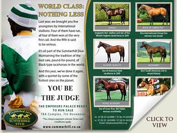 world class stallions