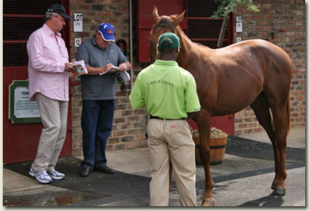 Mike de Kock and Jegan Malherbe at the National Yearling Sale Block A