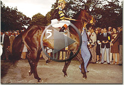 seattle slew documentary