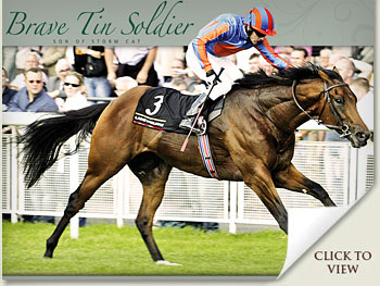 brave tin soldier horse