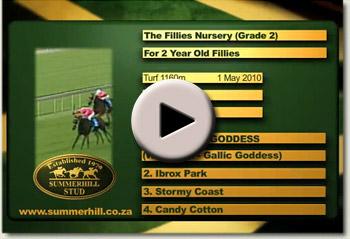 2010 fillies nursery waywest goddess video