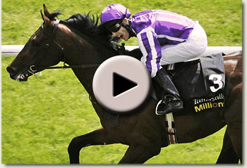 fame and glory tattersalls gold cup 2010 video