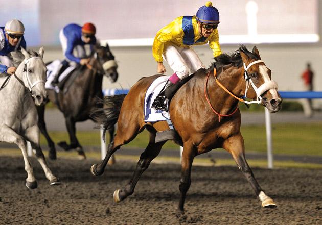Golden Sword Horse