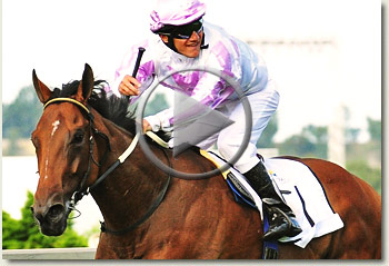 pierre jourdan gauteng guineas video