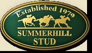 summerhill stud