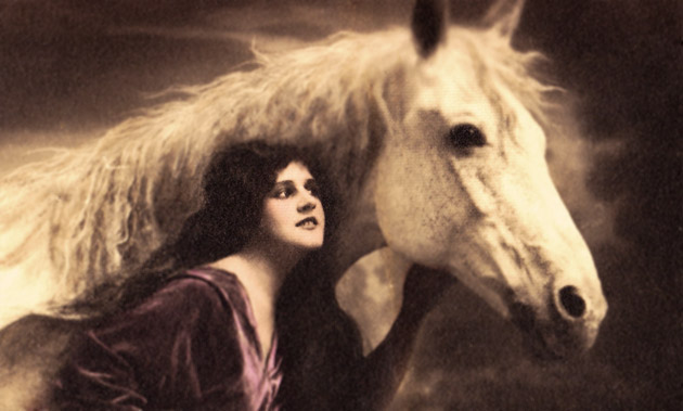 Horse and Lady