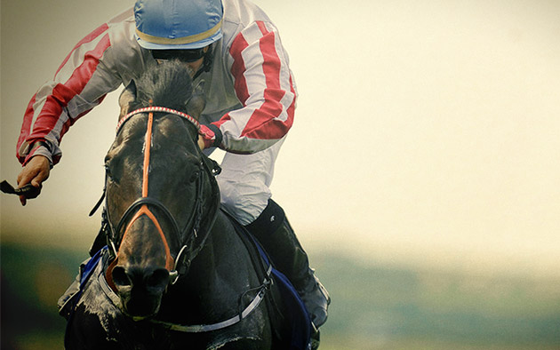 Slade Power - Darley July Cup (Group 1) / SMH (p)
