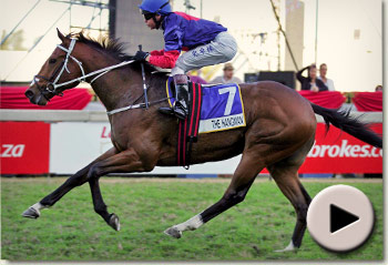 The Hangman - Premier's Champion Stakes