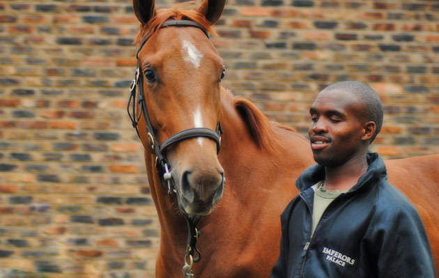 Mthokozisi Sithole Jockey