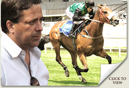 markus jooste and blue voyager