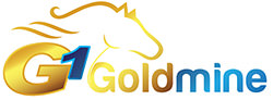 Goldmine Stallion Match