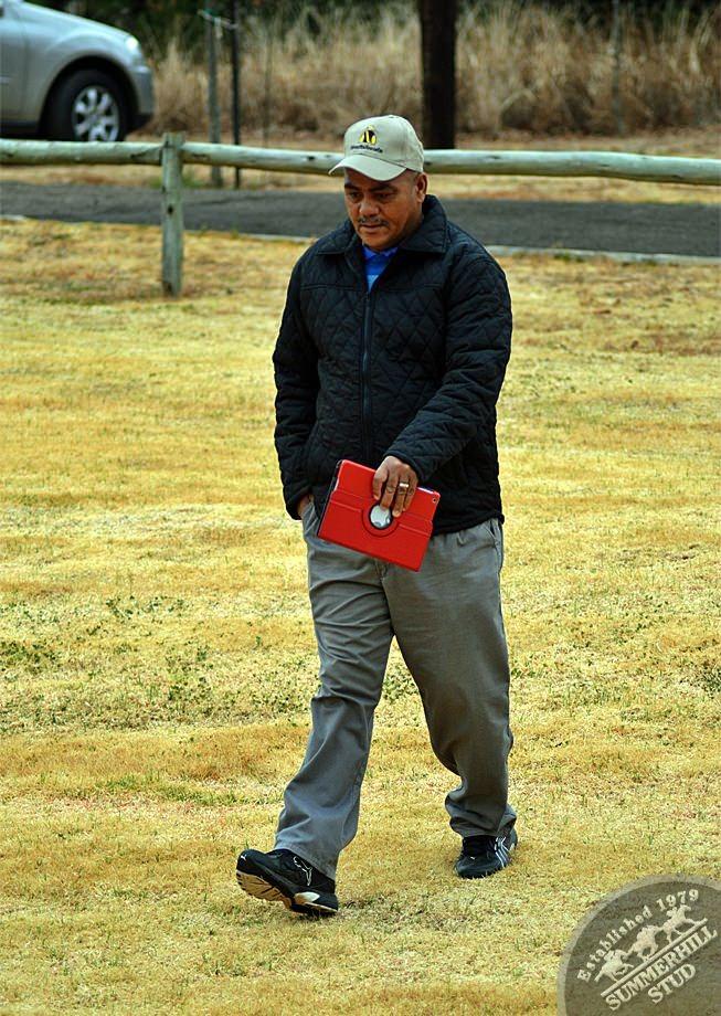 cathsseta-stallion-day-12.jpg