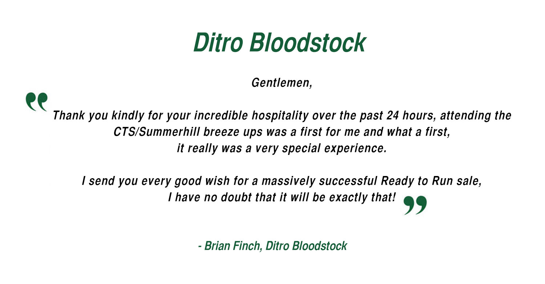 Brian Finch - Ditro Bloodstock