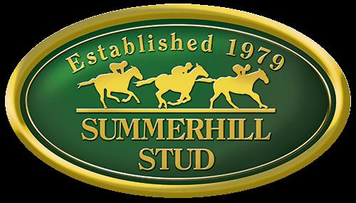 Summerhill Stud Established 1979