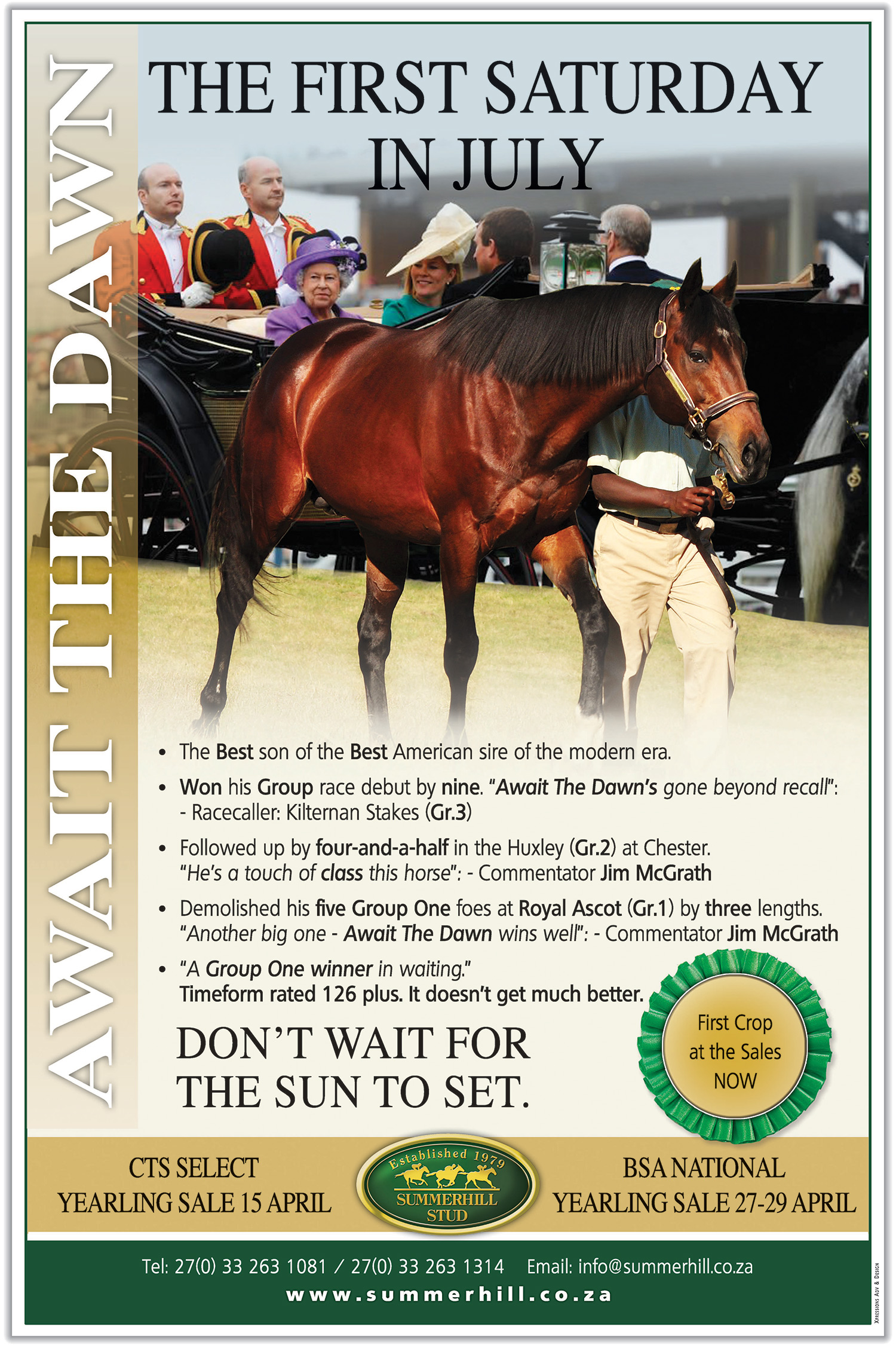 Await The Dawn Yearling Sale