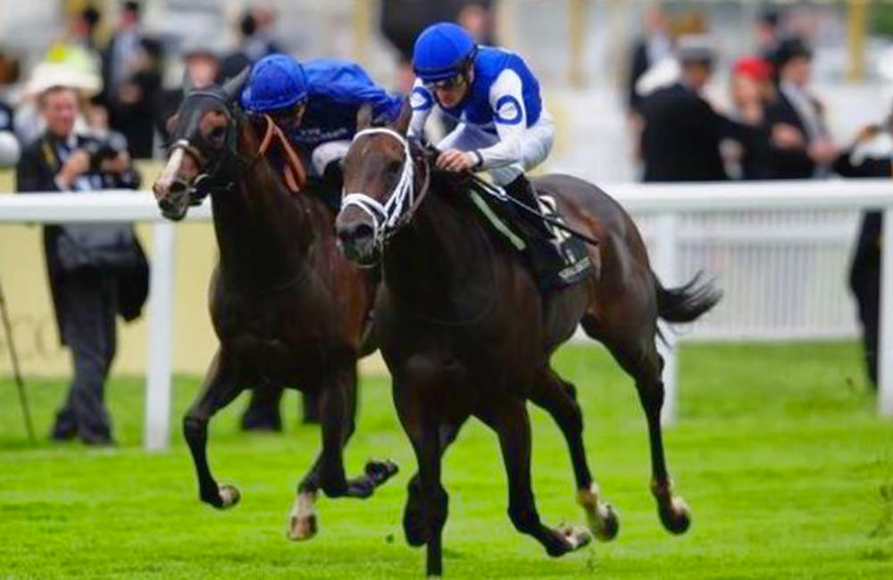 Tepin - Queen Anne Stakes (Group 1) / Mondoturf (p)