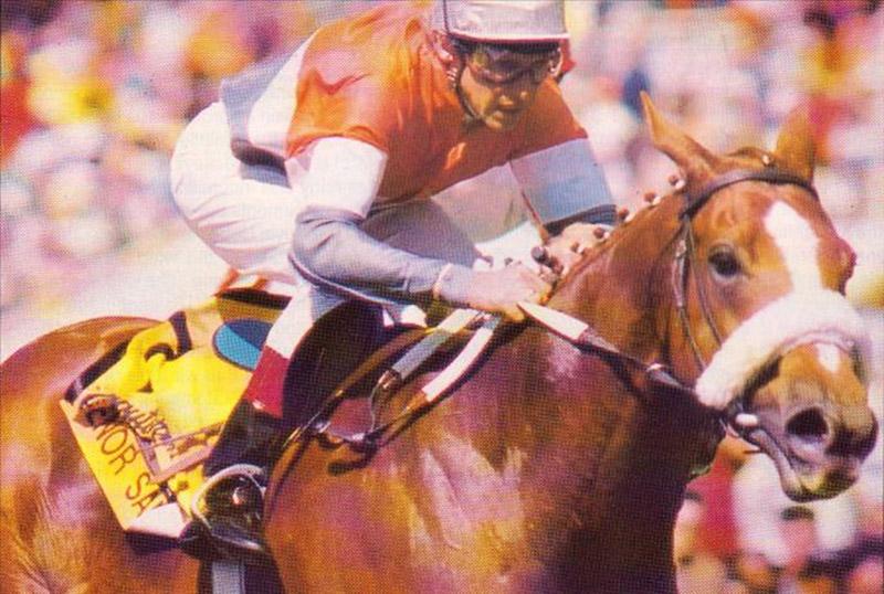 Senor Santa winning the 1993 Computaform Sprint